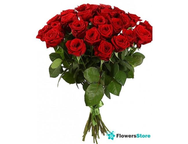 Срезанные цветы купить москва комнатные цветы винница купить