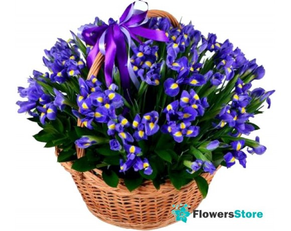 Basket with flowers irises