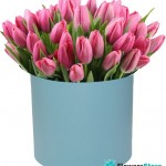Tulips in a hat box (51 pieces)