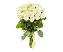 Bouquet of roses (25 white)