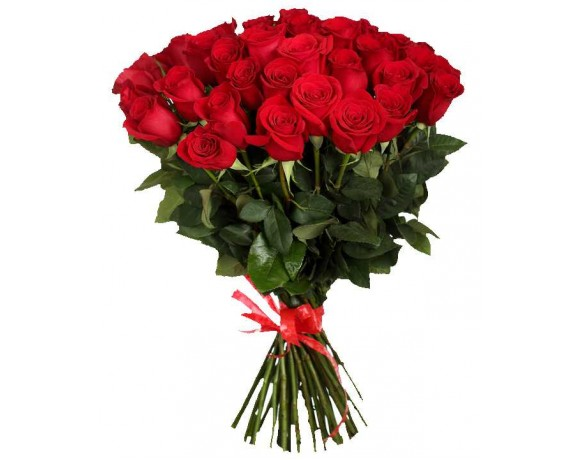 Bouquet of roses from Holland (25 red